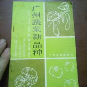 广州蔬新品种