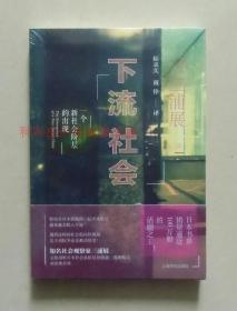 正版 下流社会:一个新社会阶层的出现 日本社会观察家三浦展