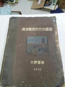 民国《满洲鸟类原色大图鉴》1大巨册   昭和十五年