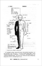 身体五态:重塑关系形貌