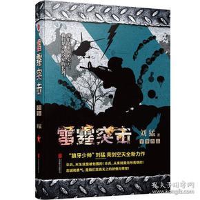 刘猛作品集:雷霆突击(全新经典作品)