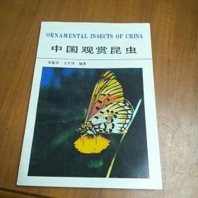 中国观赏昆虫