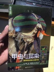 自然之灵:甲虫与昆虫
