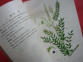 浙江杀虫植物图说第一册