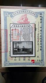 上海阳明 2015年 中国之老股票与债券