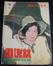 小说林1987年(总第70期)