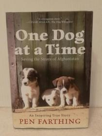 One Dog at a Time: Saving the Strays of Afghanistan by Pen Farthing 英文原版书