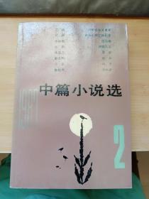 1987中篇小说选2