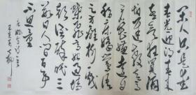 【保真】书法家七柳草书作品:姚合《赏春》