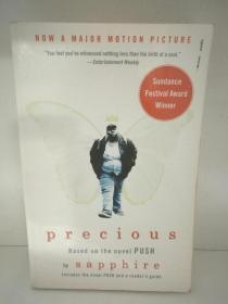 Precious by Sapphire Base on the Novel Push (美国黑人文学/电影原著)英文原版书