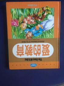 纯美童书白金珍藏版 (爱的教育)(完美女孩公主故事)
