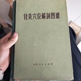 针灸穴位解剖图谱(16开精装本)
