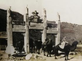 1900年代银盐照片经过玉泉山牌坊的骆驼队,牌坊今已不复存在,照片很珍贵,14x9厘米。