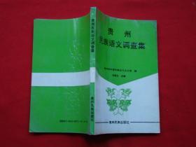 贵州民族语文调查集