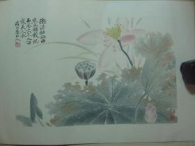 早期木板水印镜心(49.5*35.2CM):恽寿平            荷花