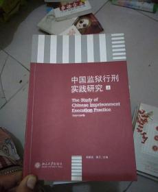 中国监狱行刑实践研究(上)