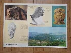 我国最早的原始人群(中国历史教学挂图 原始社会 5(1))