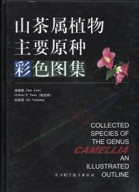 山茶属植物主要原种彩色图集