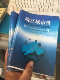 皖江城市带承接产业转移示范区研究=demstratize