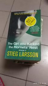 外文版THE GIRL WHO KICKED THE HORNETS NEST【踢马蜂窝的女孩】42