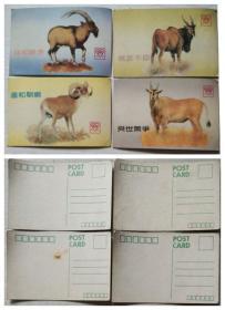 羚羊、黄羊等明信片(4张)