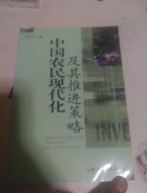 中国农民现代化及其推进策略
