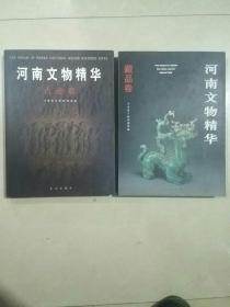 河南文物精华 两本合售(古迹卷)(藏品卷)