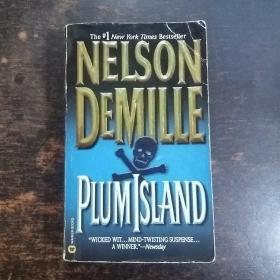 英文原版:Plum Island