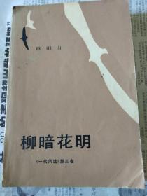 柳暗花明《一代风流》第三卷
