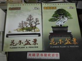 花木盆景--盆景赏石2008年3,4,5,6,7,8,9,10,11,12月号(B版)十本合售