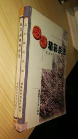 车马兵精彩杀法+马炮精彩杀法(2册合售)