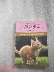 中外动物小说精品·第3辑:小猫欧罗巴