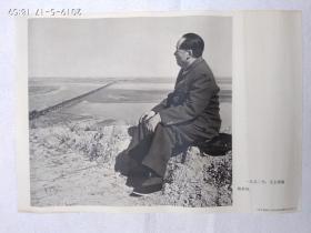 红色收藏宣传画(一九五二年,毛主席视察黄河)
