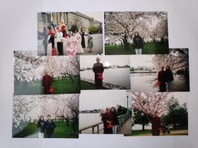 """2004年旅游美国华盛顿拍摄的""""樱花节表演""""照片17张(15乘10厘米)"""