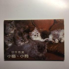 世界博览小猫小狗明信片十张