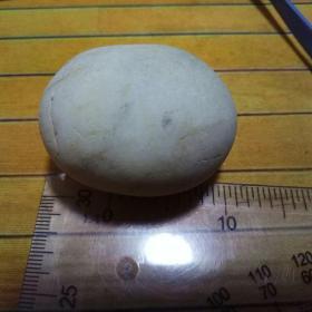 石头(鸽子蛋)