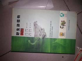 野生动植物执法