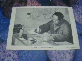毛主席像 一九四六年,毛主席在延安枣园窑洞中工作。单面黑白色