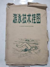 游泳技术挂图(1966年一版一印)