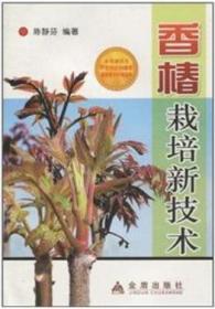 香椿栽培新技术