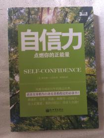 自信力:点燃你的正能量【32开 2013年一印】