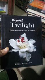 Beyond Twilight[暮光之城的背后] [精装]