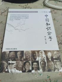 20世纪中国知识分子