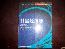 计量经济学(第二版)/庞皓/2007年/九品