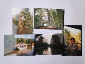 """2003年旅游美国新奥尔良""""沼泽""""""""密西西比河畔""""拍摄的照片10张(15乘10厘米)"""
