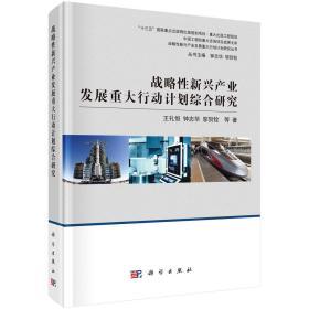 战略性新兴产业发展重大行动计划综合研究