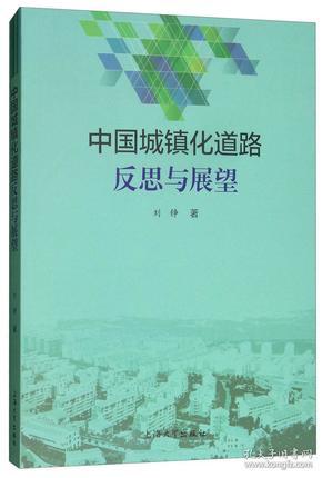 中国城镇化道路反思与展望