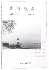 梦回故乡/作者 徐光惠/北方文艺出版社