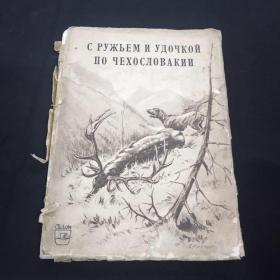 俄文原版 116