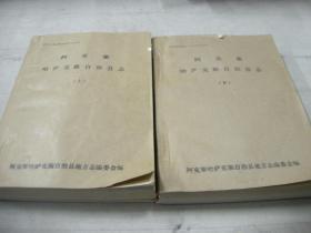 80年代油印本--《阿克塞哈萨克族自治县志》上下两册全,